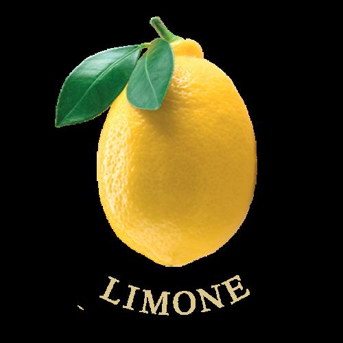 limone-frutti-terra-calabria